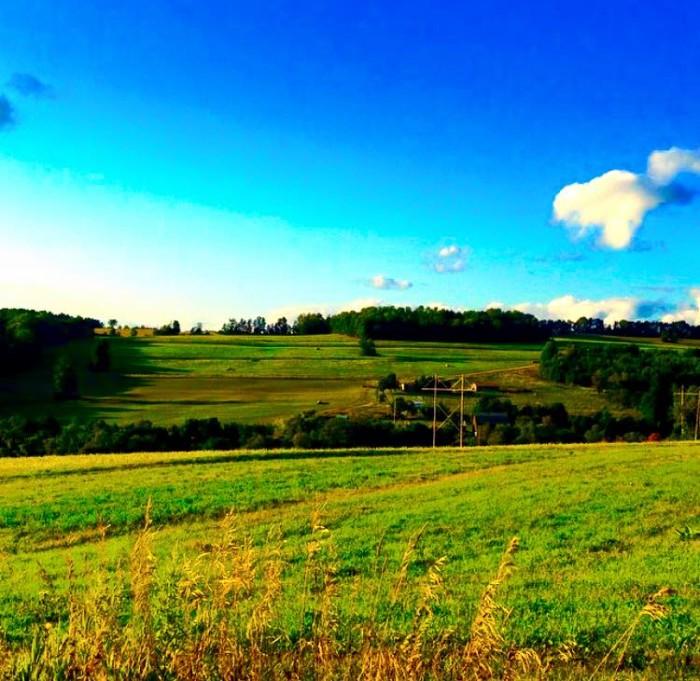 20. The endless fields of Covington create a beautiful landscape.