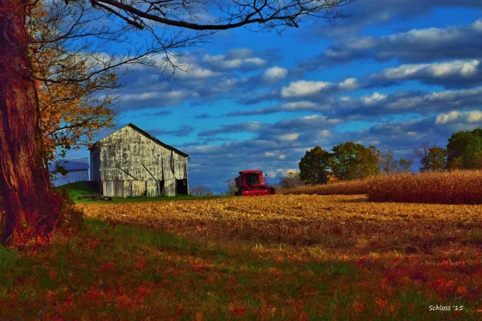 5. Athens County October beauty