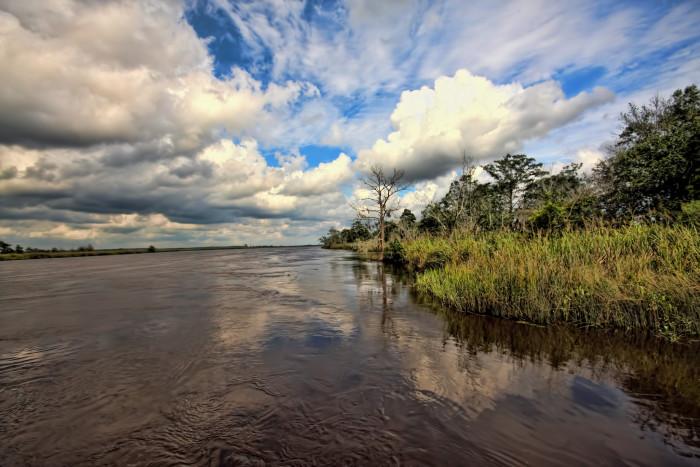 4. Altamaha River - Darien, Georgia