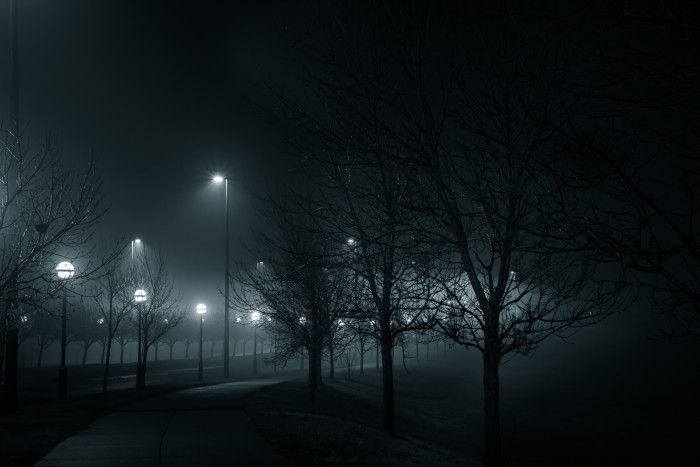 12. The heavy fog in this picture looks like it's about to turn into a light rain.