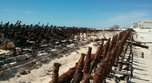 What Washed Ashore During Hurricane Isaac In Alabama Is Unbelievable