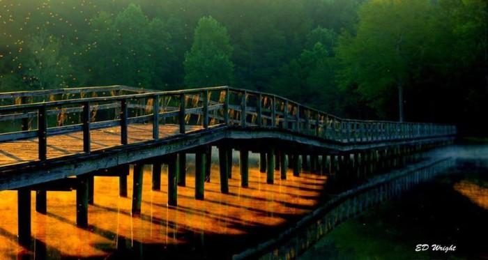 13. A stunning Hattiesburg sunrise lights the way.