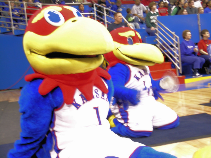 10. We know EXACTLY what a Jayhawk is...