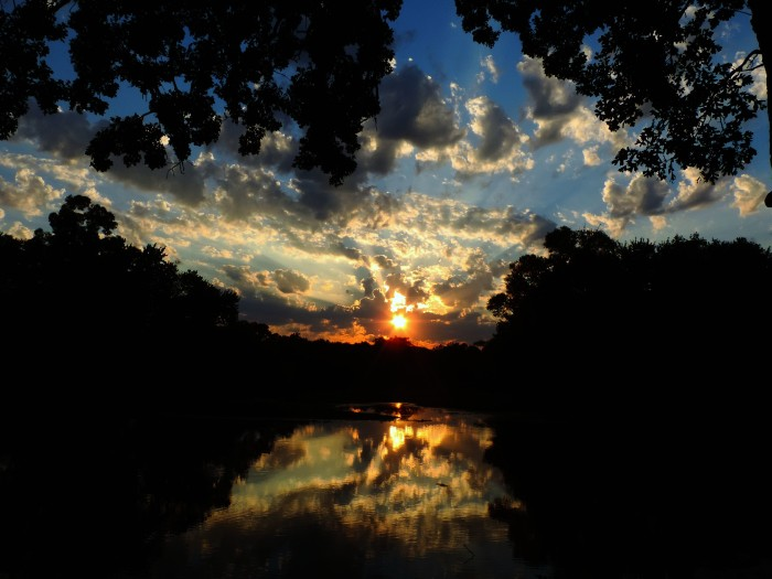 13. Romaine Wells snapped a shot of this truly magical sunrise near Charles City.