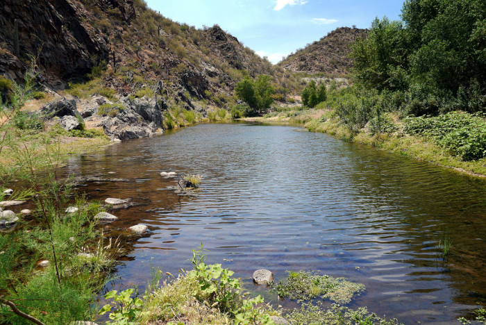 1. The Agua Fria River is a total of 120 miles and runs from the Prescott area right into Lake Pleasant.