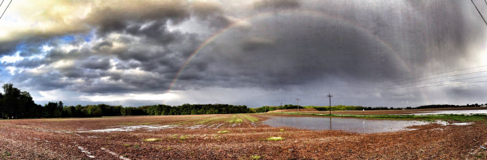 10. The only thing better than rainbows is storms. What better picture than one that has a rainbow and some storm clouds? This picture was taken in Fishers.