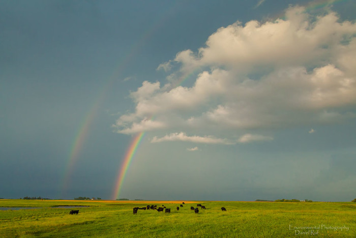 12. Another double rainbow appears after a summer storm.
