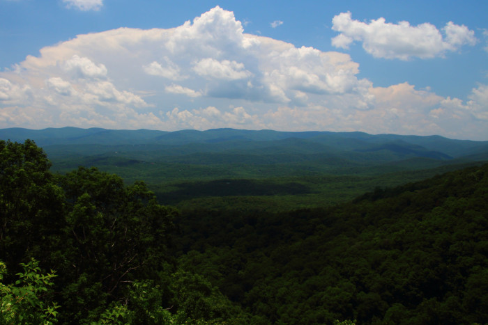 1. Chattahoochee National Forest - Suches, GA 30572