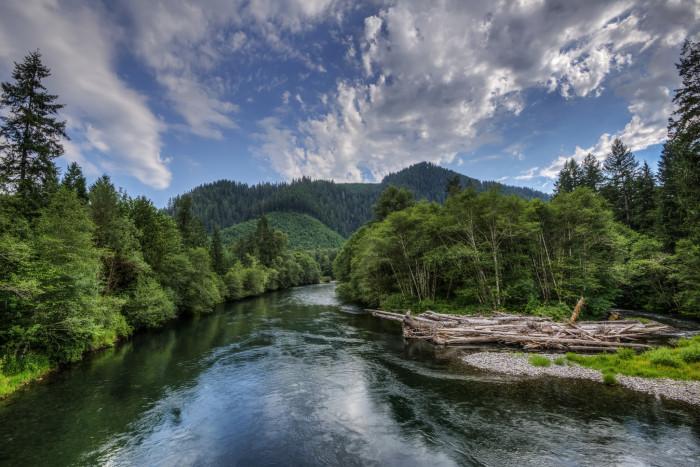 12) McKenzie River