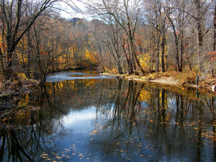 The best rivers in new jersey for Passaic river fishing