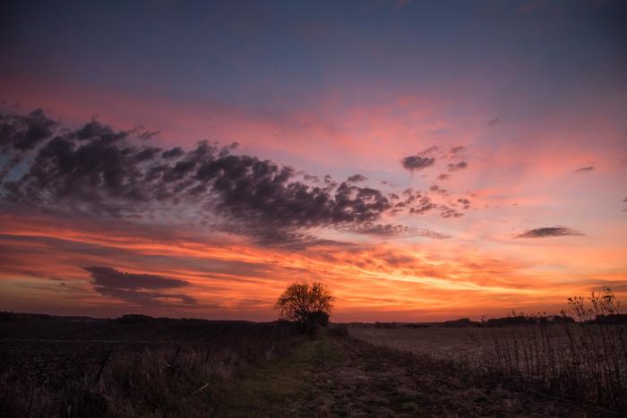 14. Lorinda Groe photographed this breathtaking sunset scene near Lake Mills.