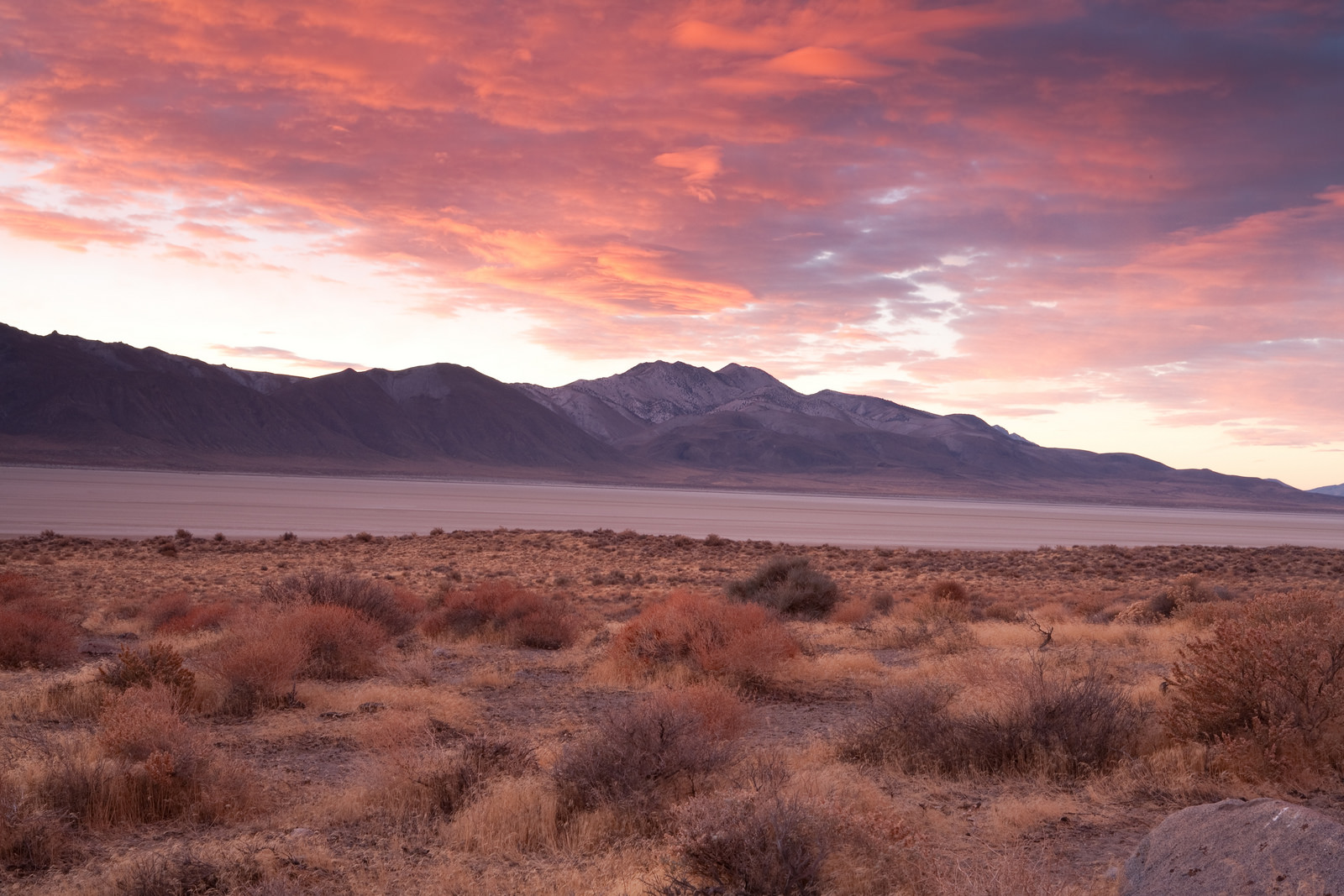 Nevada Nature: The Most Incredible Natural Wonders In Nevada