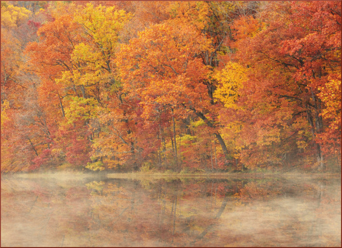 1. Yellowwood State Forest