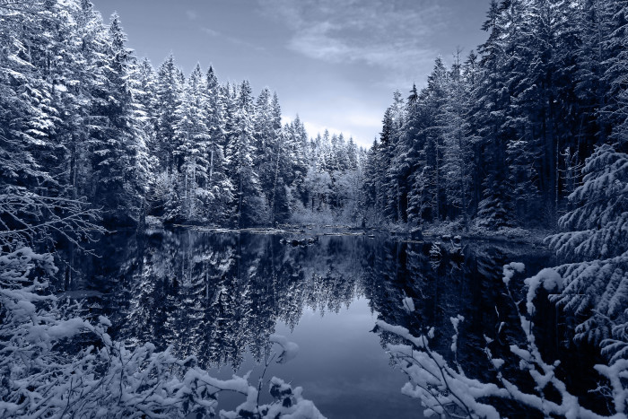 7. You'll experience some of the most beautiful winters in the world.