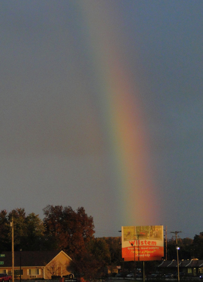 6. Do you think there might be a pot of gold hiding at Wilstem Ranch?