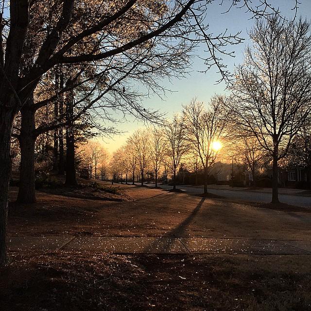 7. An icy morning in Georgia.