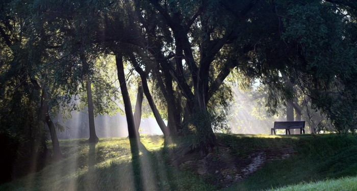 14. Carolyn Fletcher took this magical-looking photo of East Park in Mason City.