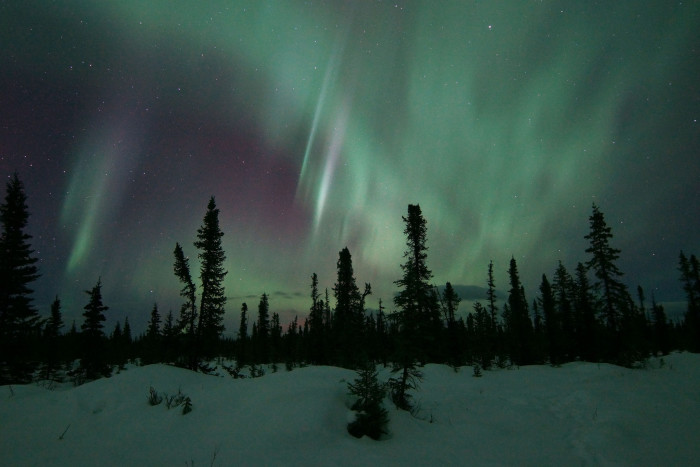 7) The aurora outside your cabin window.