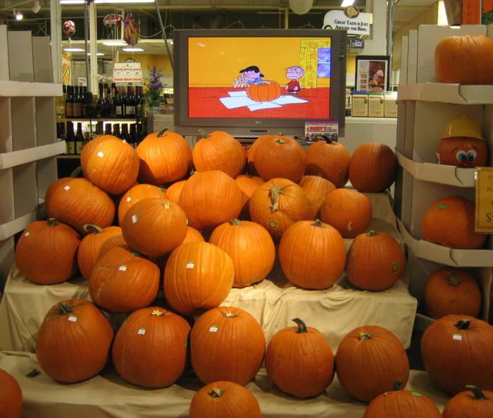 4. Visit a pumpkin patch for an authentic Florida harvest experience.