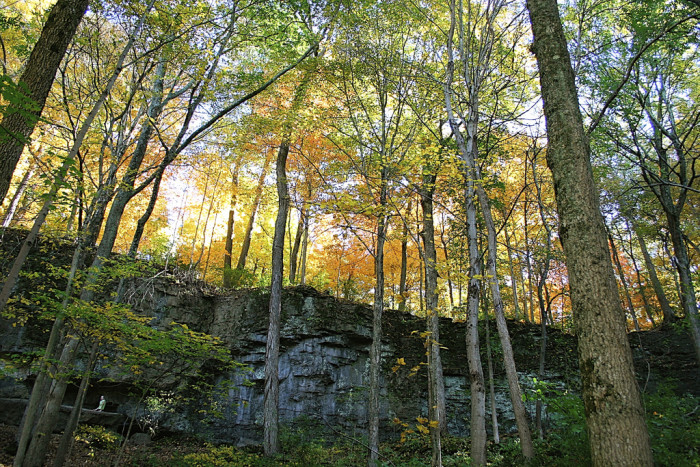 9. John Bryan State Park and Clifton Gorge State Nature Preserve (Yellow Springs)