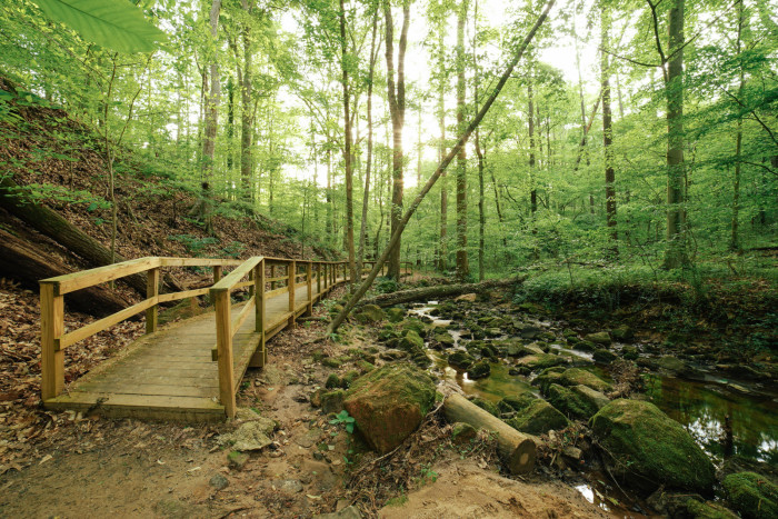 7. Cascade Springs Trail - 2852 Cascade Rd SW, Atlanta, GA 30311