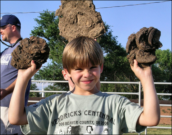 9. Cow chip throwing contests.