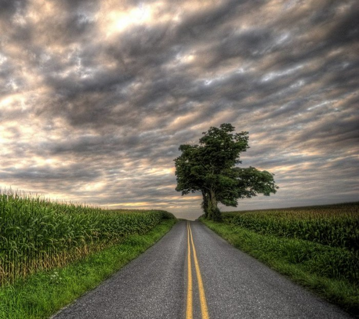 25. A sweet Sunday drive beneath a cloudy sky. Can you smell the moisture in the air?