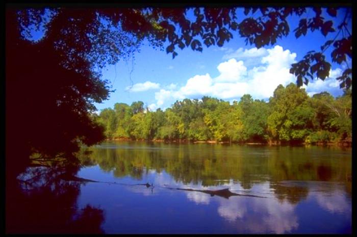 1. Harbison State Forest