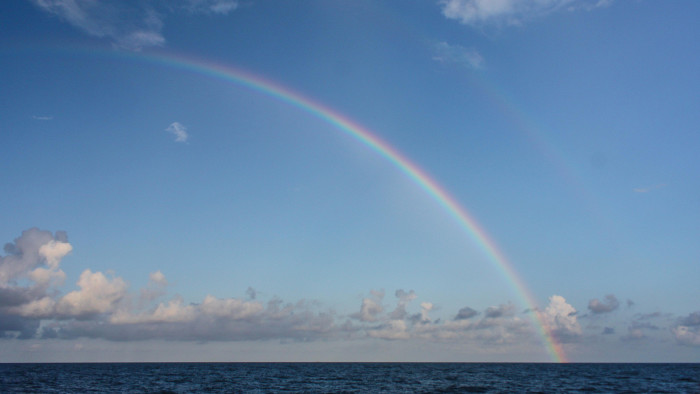 9. The Alabama Center for Ecological Resilience captured this rainbow, and this photo couldn't be any more AMAZING!