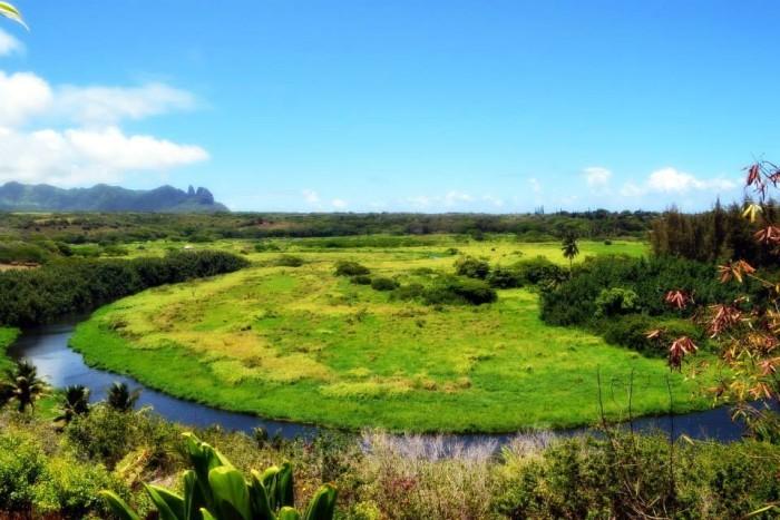 2) Lush greenery and a beautiful blue sky surround Kealia Stream, on Kauai.