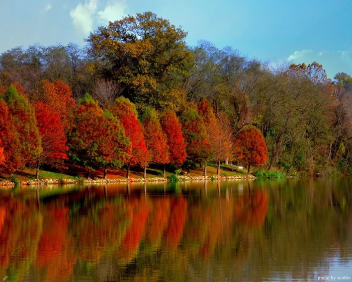 20.  Terry Scott Scottie shared this capture taken at Harrison Lake Road in Festus. This may be one of my favorite fall photos to date!