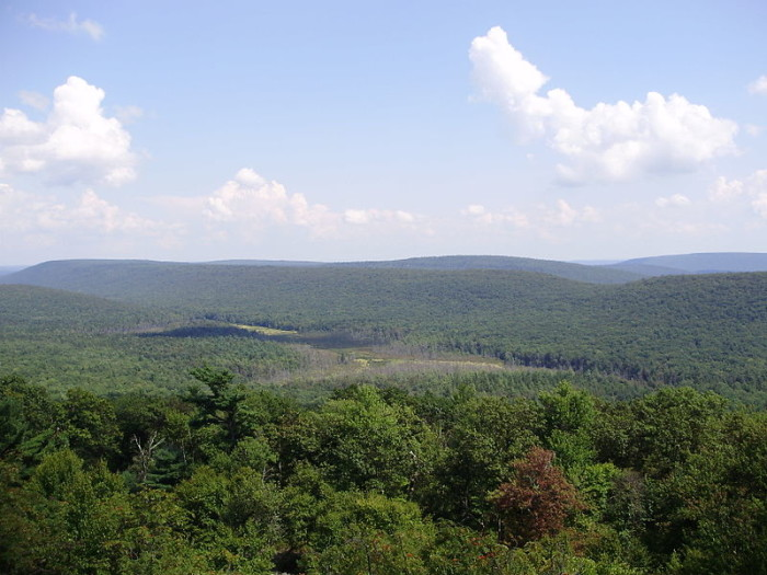 2. Rothrock State Park