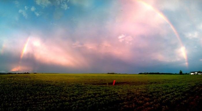 2. This extraordinarily beautiful rainbow sits over a field of beans.