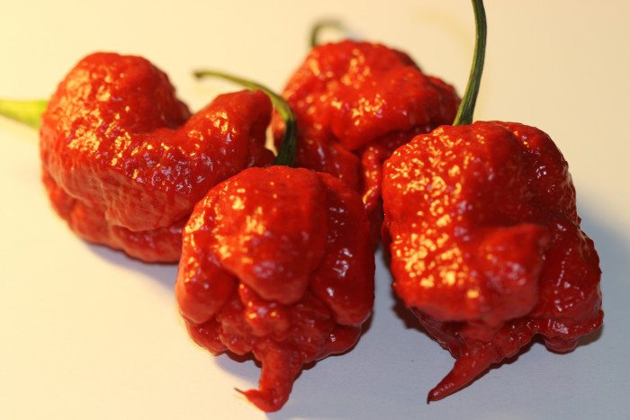 "6. You would never know what the word ""hot"" really meant. Thank you Carolina Reaper for letting us know."