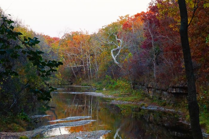25. Another great fall photo taken by Tammy Gunter Johnson at Big Piney River near Cabool.