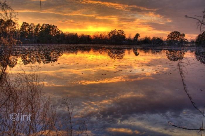 2. Another beautiful shot of the same lake in Georgia.