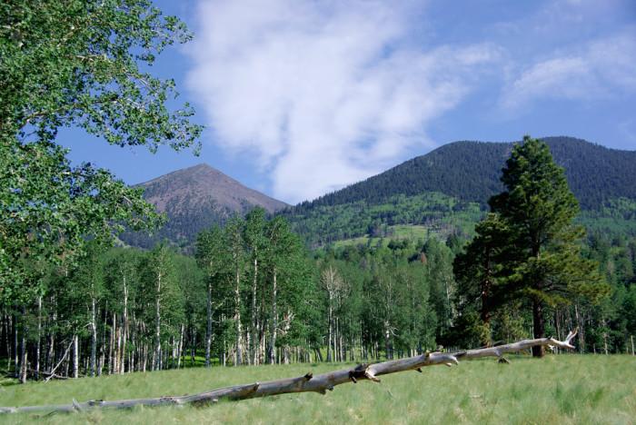 3. Kachina Trail, Flagstaff