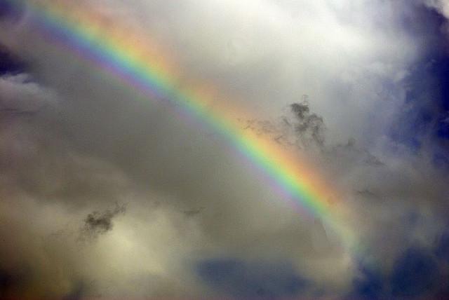 "4. ""Bold Rainbow"""