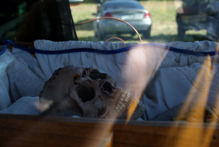 2) Human skull on Hill Rd. in Danby