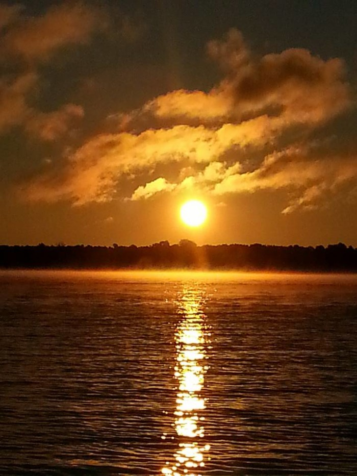 3.  Thank you to Brandy Norris for sharing this beautiful sunrise on Thomas Hill Lake.