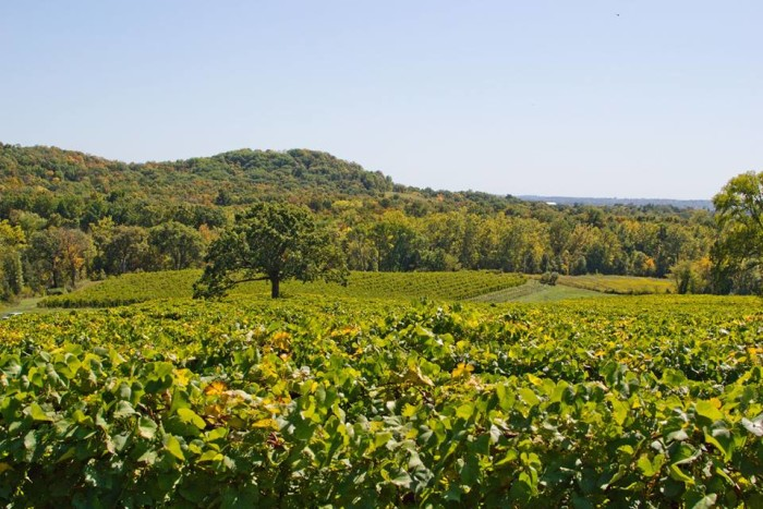 3. Augusta Winery, Augusta