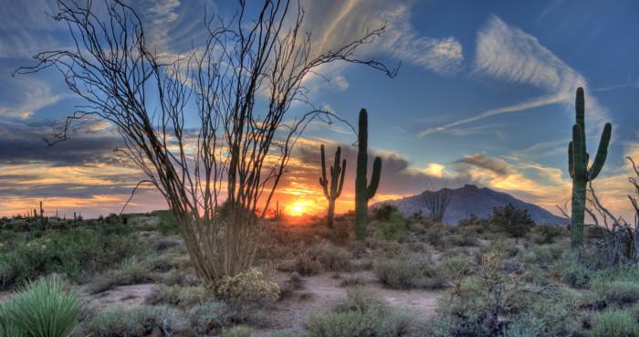 3) Or Arizona...