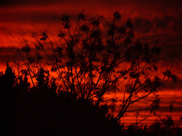 12) A red sunset somewhere in Texas in the fall...what a beautiful sight to behold!