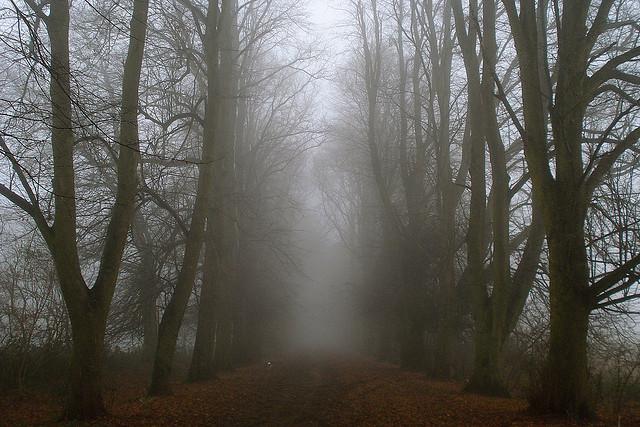 1. Hansell Road in Buckingham