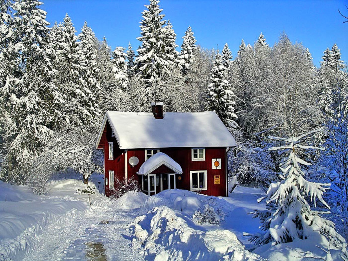 12. Once the Fall season starts we immediately start talking about and wondering what the Winter is going to bring. Some of us would LOVE  a white Christmas as you see in the picture, but realistically I don't think that will happen. We might get cold weather, a few flurries, and ice though.