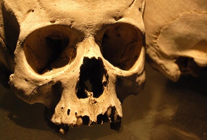 3. Ancient Humans