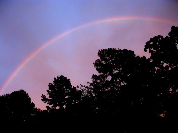 3. The perfect way to end the day, a rainbow makes an appearance in Starkville at dusk.