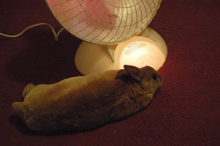 5) It's gonna be time to reunite with my BFF, the space heater.