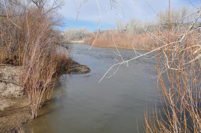 1. Carson River