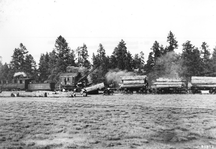 1. One of the big industries in Arizona at the time? Logging. This photo shows a train hauling away 16-foot logs from Coconino National Forest.
